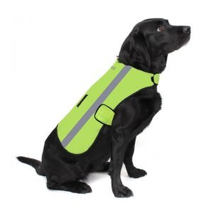 Proviz NEW: Classic Hi Visibility Waterproof Dog Coat
